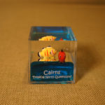 Cairns - Water Cube - paper Weights - 2014 (4)